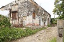 cubana_productions_6986