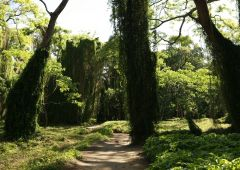 parks_0188