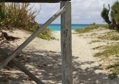sand path to the beach